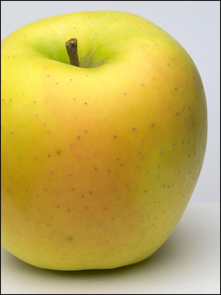 apples_mutsu