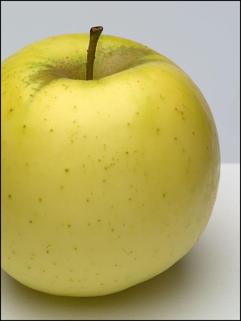 apples_tolman_sweet