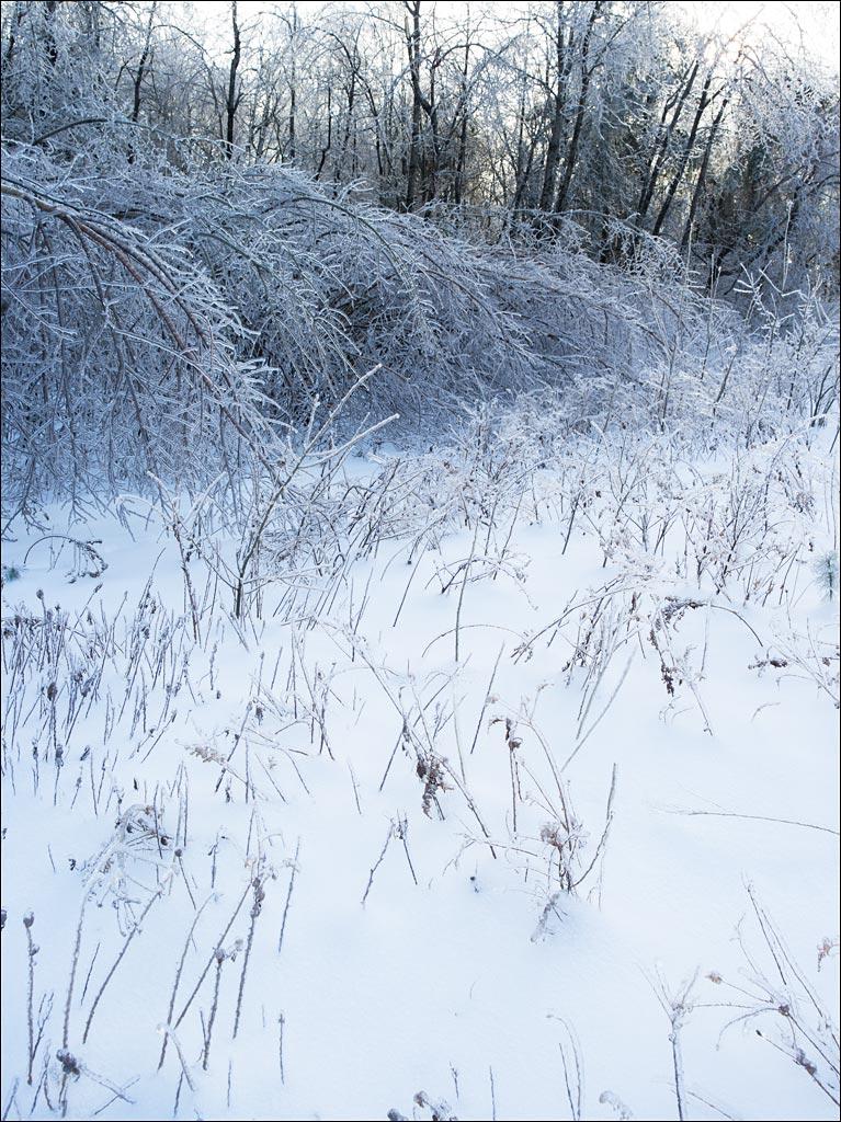 ice_storm_1