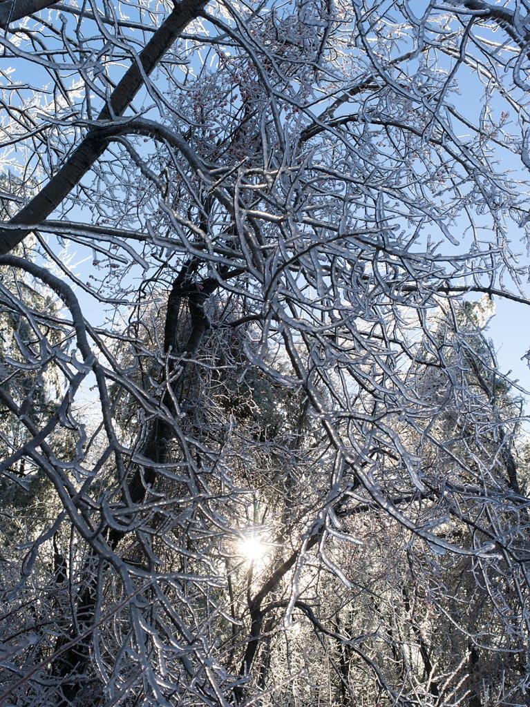 ice_storm_7