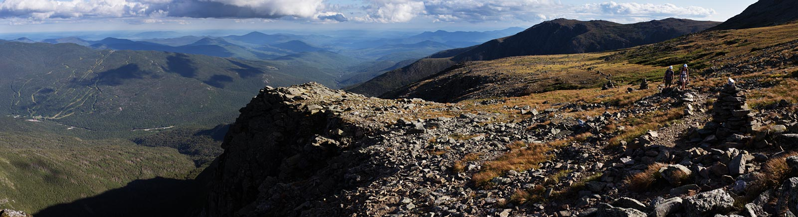 mt_washington_alpine_gardens