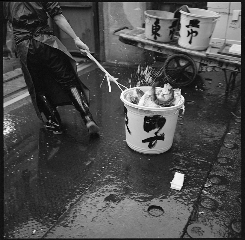 tsukiji_fish_bucket