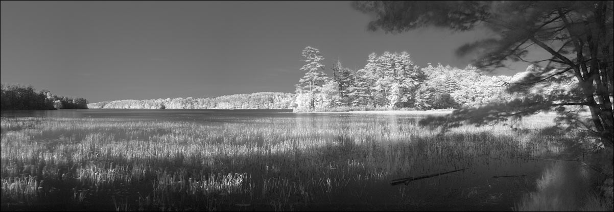 life_in_maine_darmariscotta_lake_ir