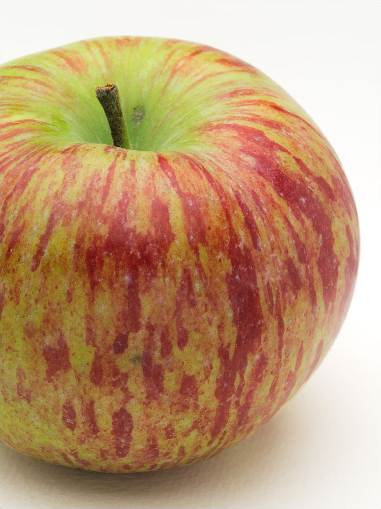 apples_st_lawrence2