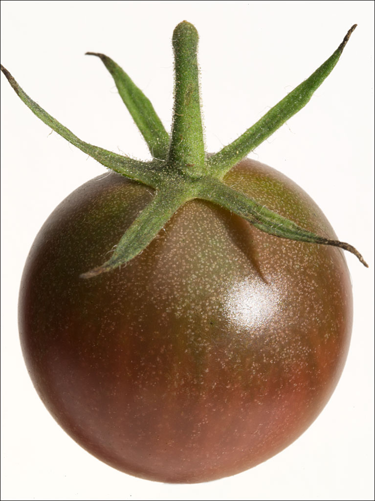 tomatoes_black_cherry