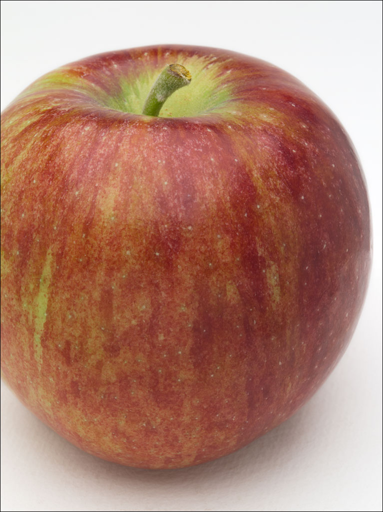 apples_cortland