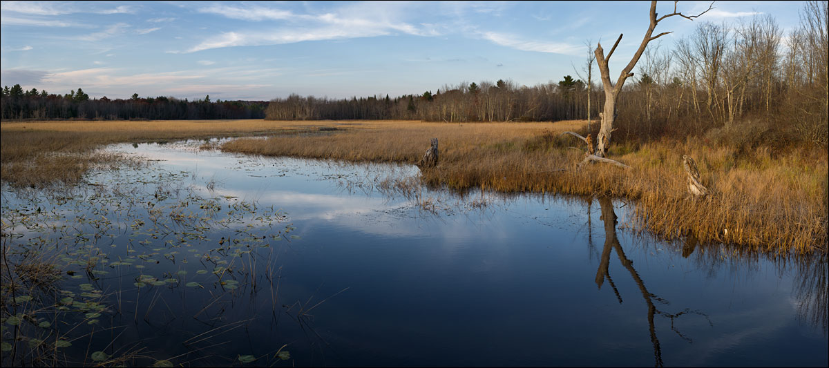 life_in_maine_pleasant_pond