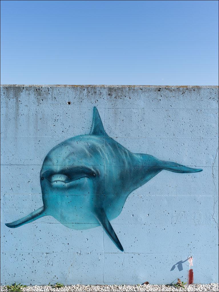 tokyo_sea_wall