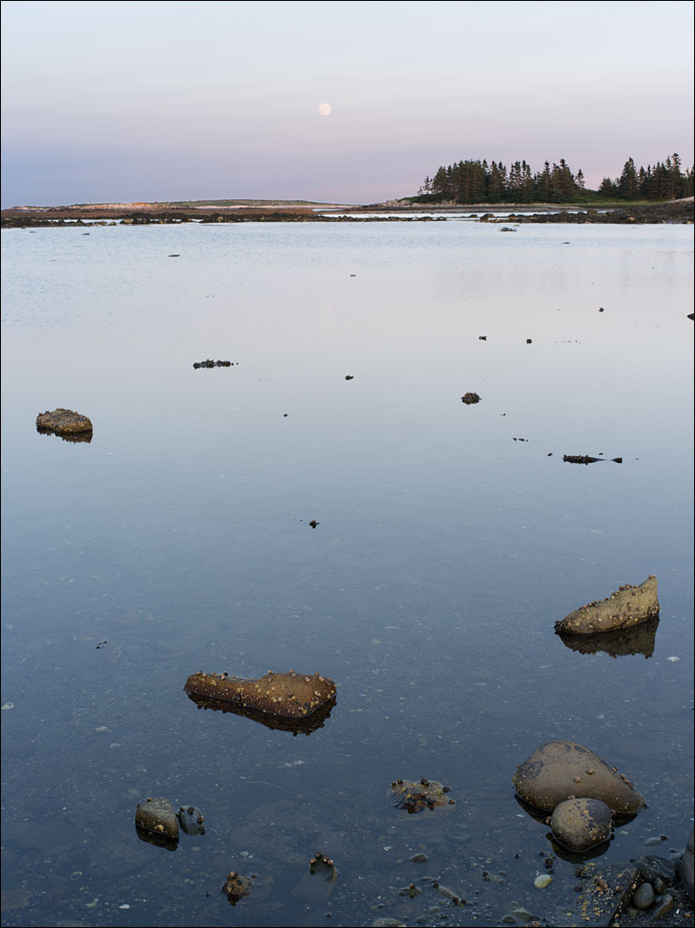 life_in_maine_dusk_at_schoodic_point