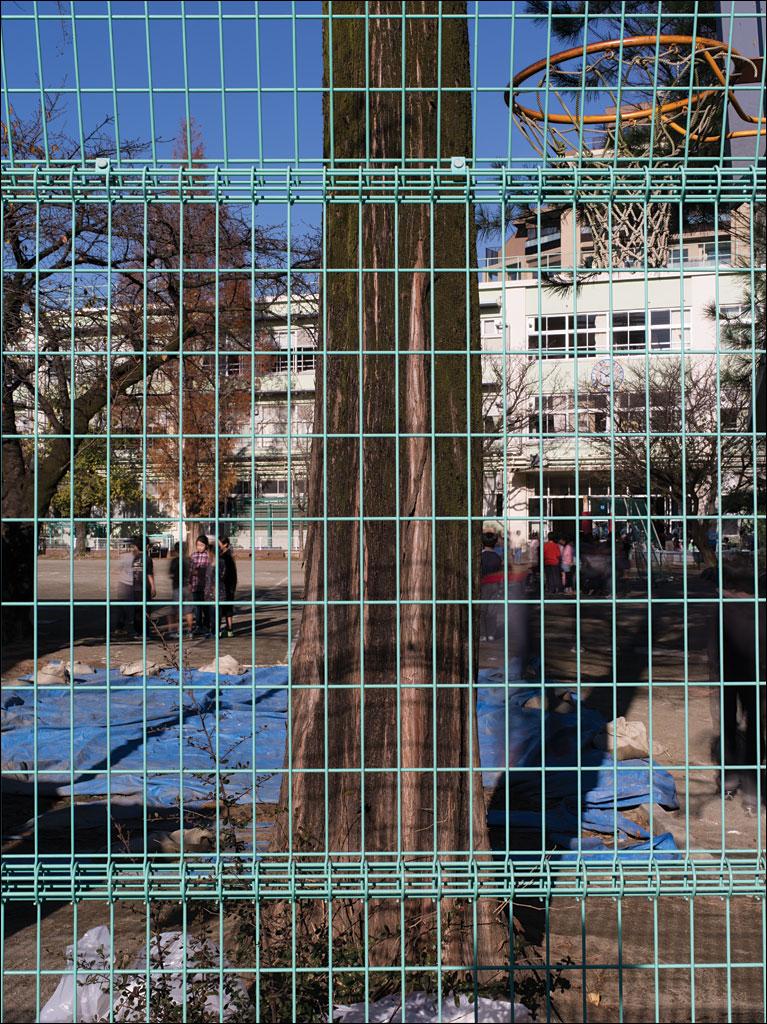 tokyo_schoolyard